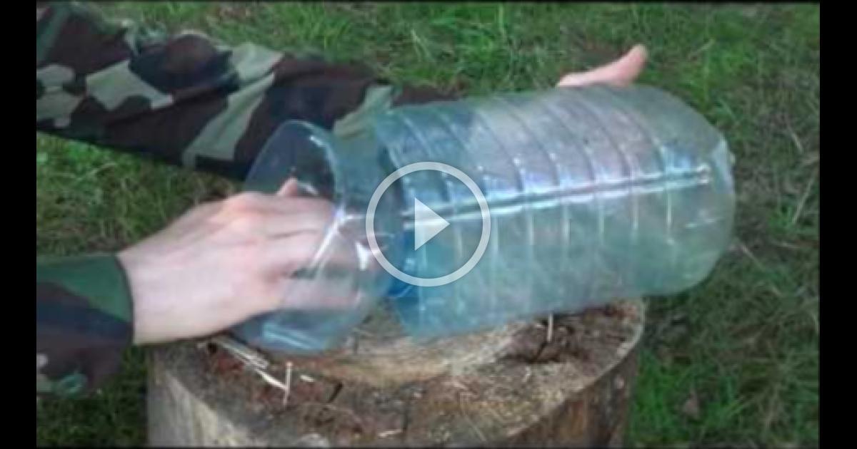 Верша из пластиковой бутылки своими руками 1